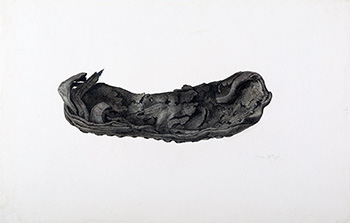 This is an image of Beatrix Potters watercolour titled Remains of black leather shoe  </h3>                             <p>